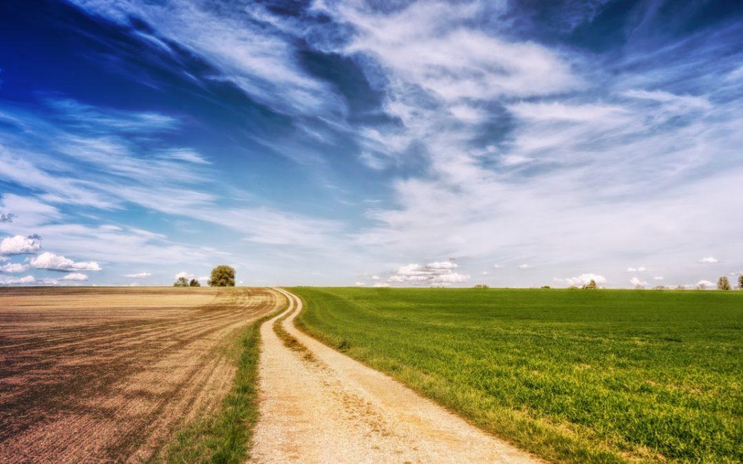 Vennootskap tussen landbou en tradisionele leiers gee hoop