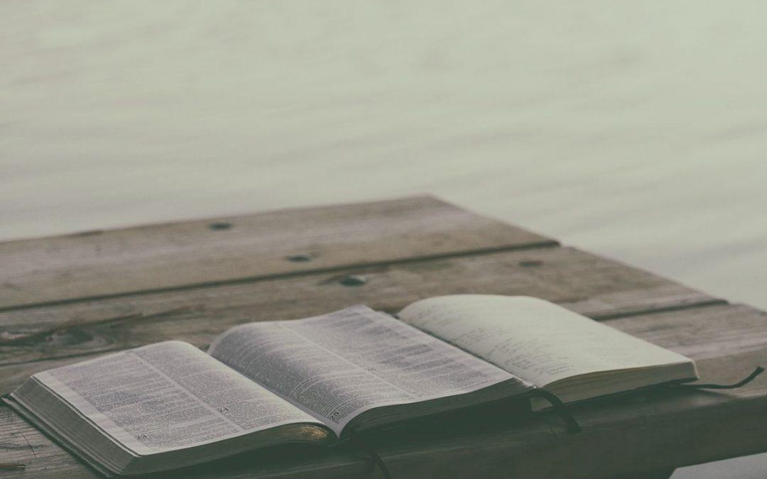 Die Bybelgenootskap en die vertaling van die Bybel in Afrikaans