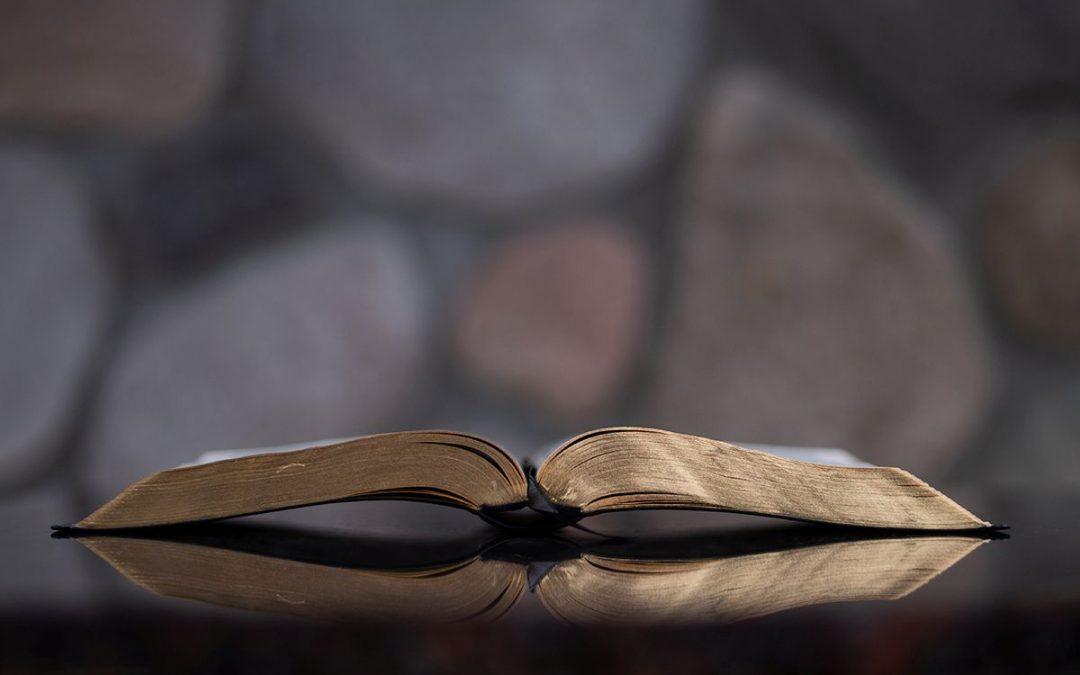 Dankie vir die Bybel 2020-vertaling!